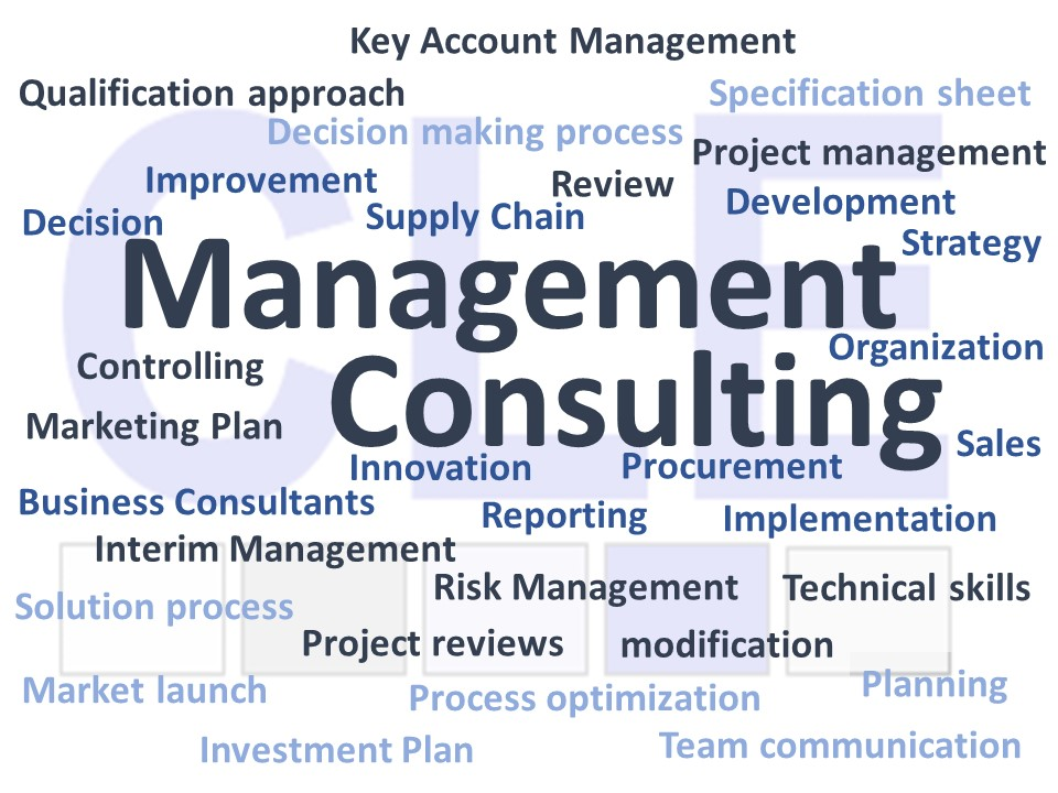 Management Consulting_190416_x